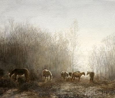 All the pretty horses - 25 x 26.5cm
