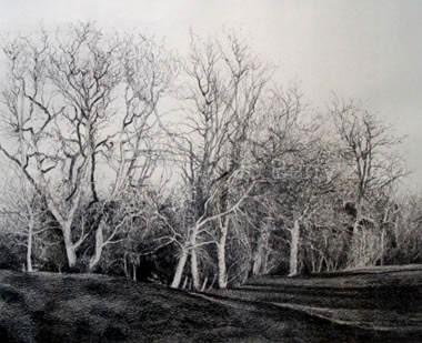 Silent Guardians - Pencil Drawing - 26 x 33 cm