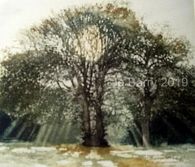 Living light - Etching -  18 x 20cm