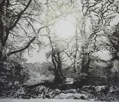 Silent touches of time - Etching - 17.5 x 19.5 cm