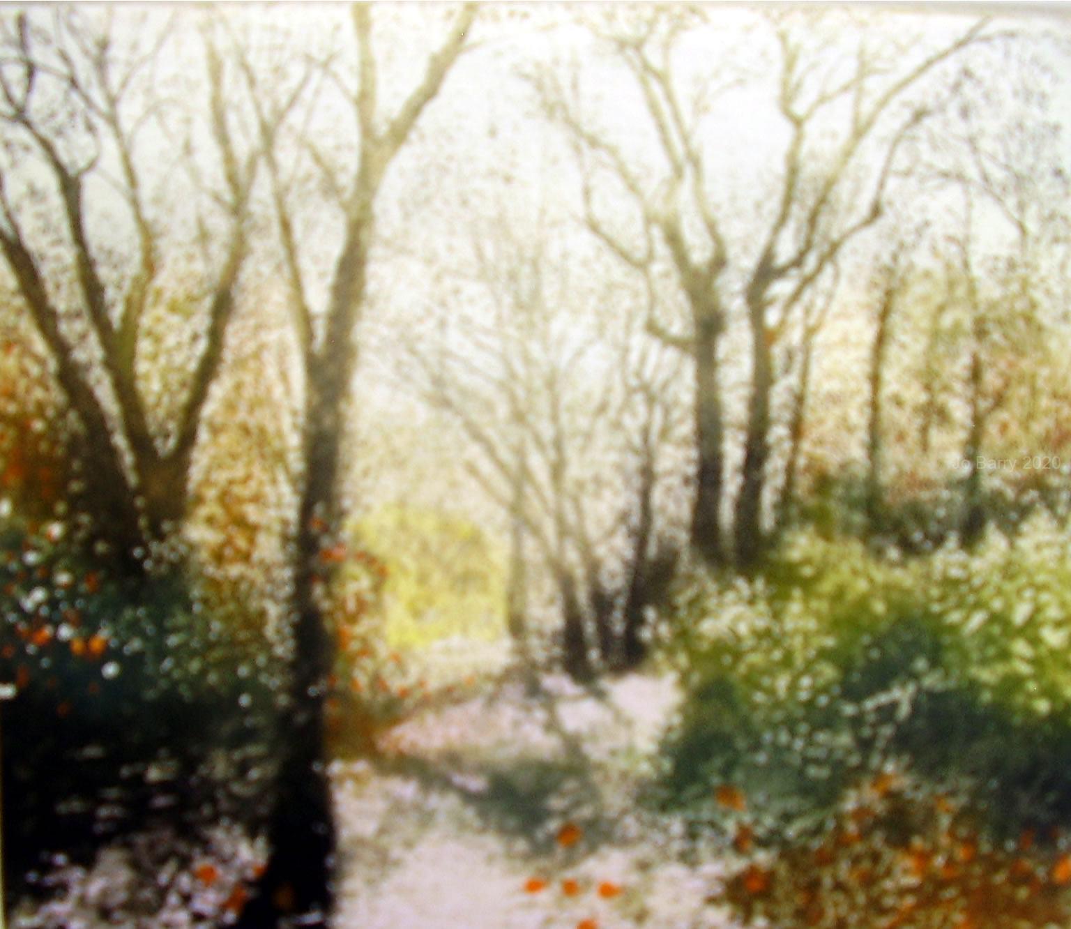 woodland track   Etching - 15 cm by 17_5 cm