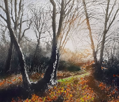 'A sigh in the woods'
